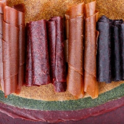 Baby Food Fruit Leather Recipe