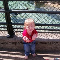 Toddler Tuesday! Things to do in Minnesota! Como Zoo is free!