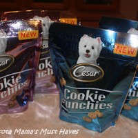 Best Dog Treats For Training Your Dog! Cesar Cookie Crunchies Review!
