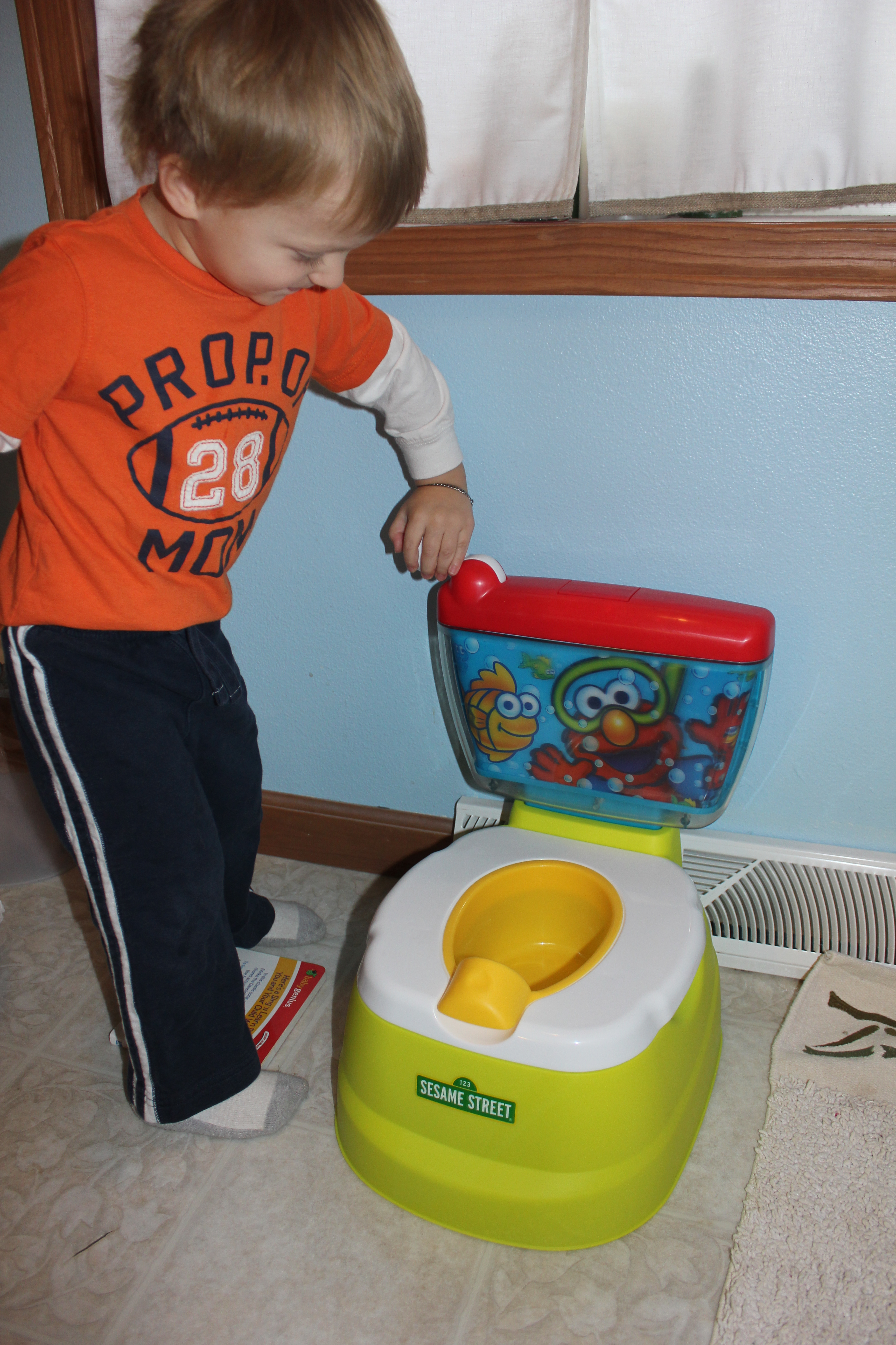 Make Potty Training Fun with the Elmo Adventure Potty Chair