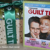 The Guilt Trip on DVD Now!