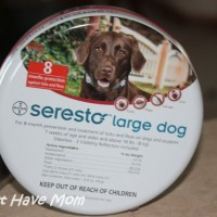 Seresto Flea and Tick Collars Protect Your Dog or Cat for Eight Months!