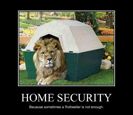 Do you have a security system minnesota based security company Home security systems reviews