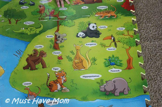 i-Mat: My Animal World