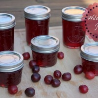Wild Plum Jelly Recipe How To Can Your Own!