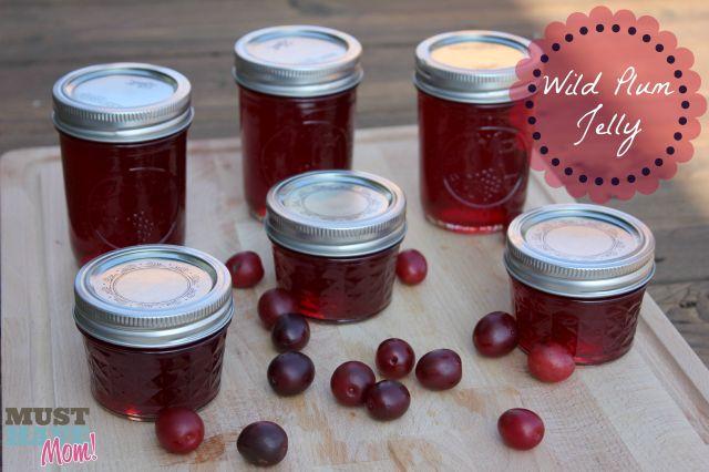 Wild Plum Jelly Recipe