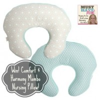 Comfort & Harmony Mombo Nursing Pillow For Feeding & Lounging!