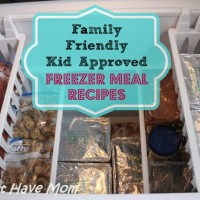 Family Friendly Kid Approved Freezer Meal Recipes