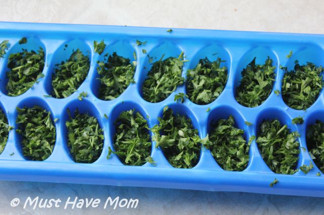 Freeze fresh herbs in ice cube trays with water for use all year long