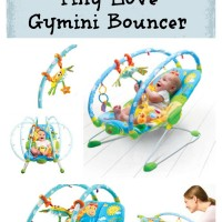 Win a Tiny Love Gymini Bouncer from Must Have Mom! Ends 11-6