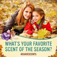 What Scents Evoke Your Favorite Holiday Memories?