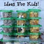 Easy On The Go Snacks For Kids!