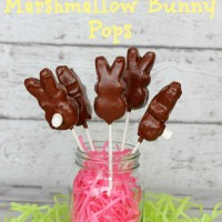 Easter Chocolate Covered Marshmallow Bunny Pops Recipe - Must Have Mom