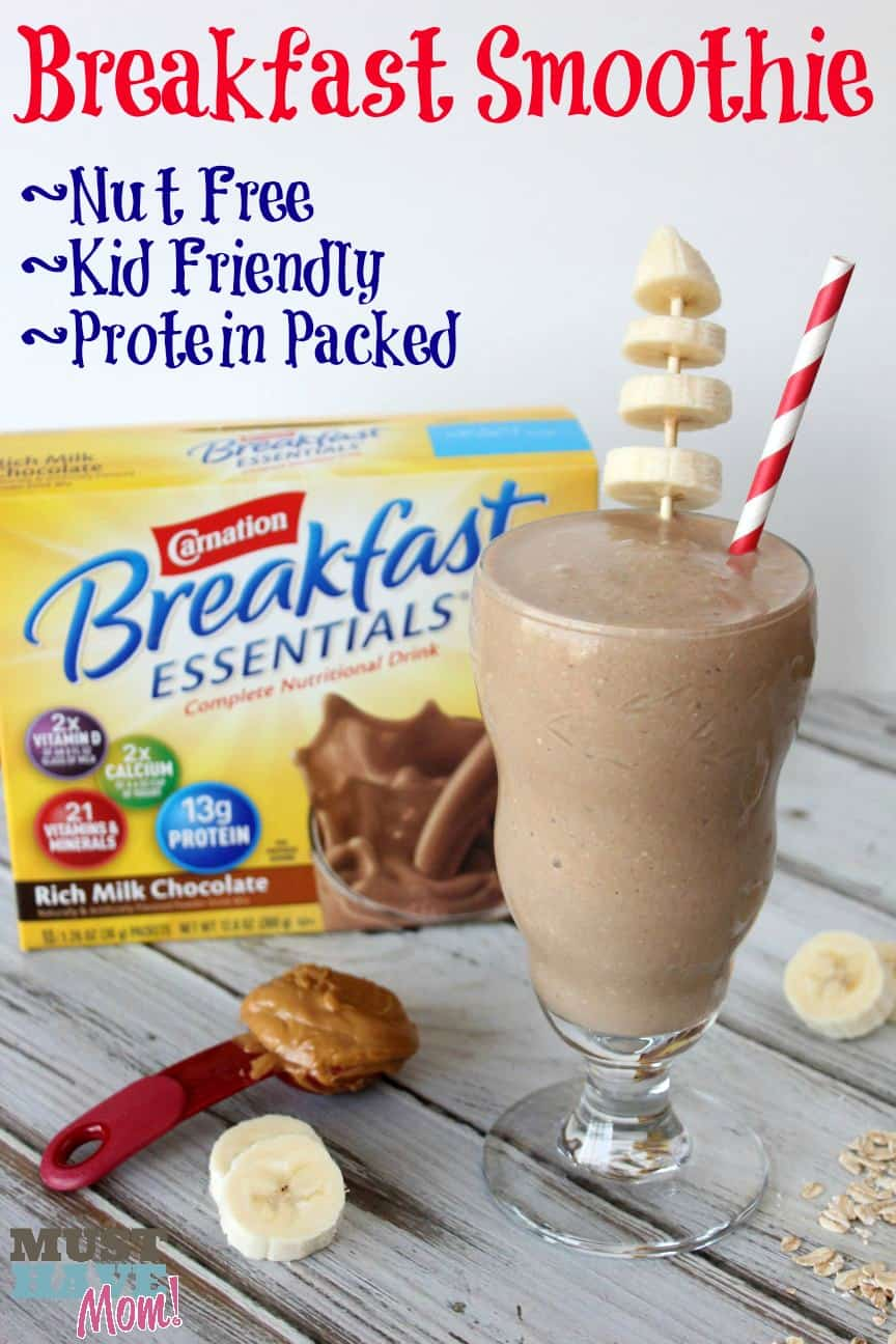 Chocolate Banana Oatmeal Smoothie Recipe - Kid Friendly, Nut Free ...