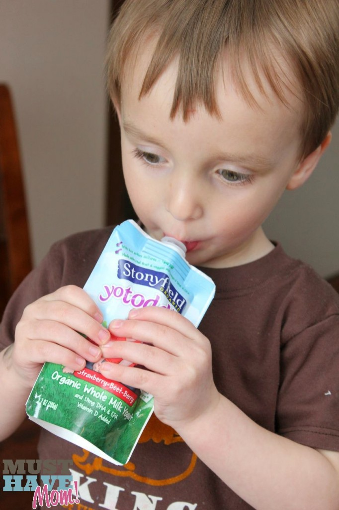 Carson Stonyfield Yogurt Pouch - Must Have Mom