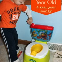 How to potty train your 2 year old & Keep your sanity! - Must Have Mom