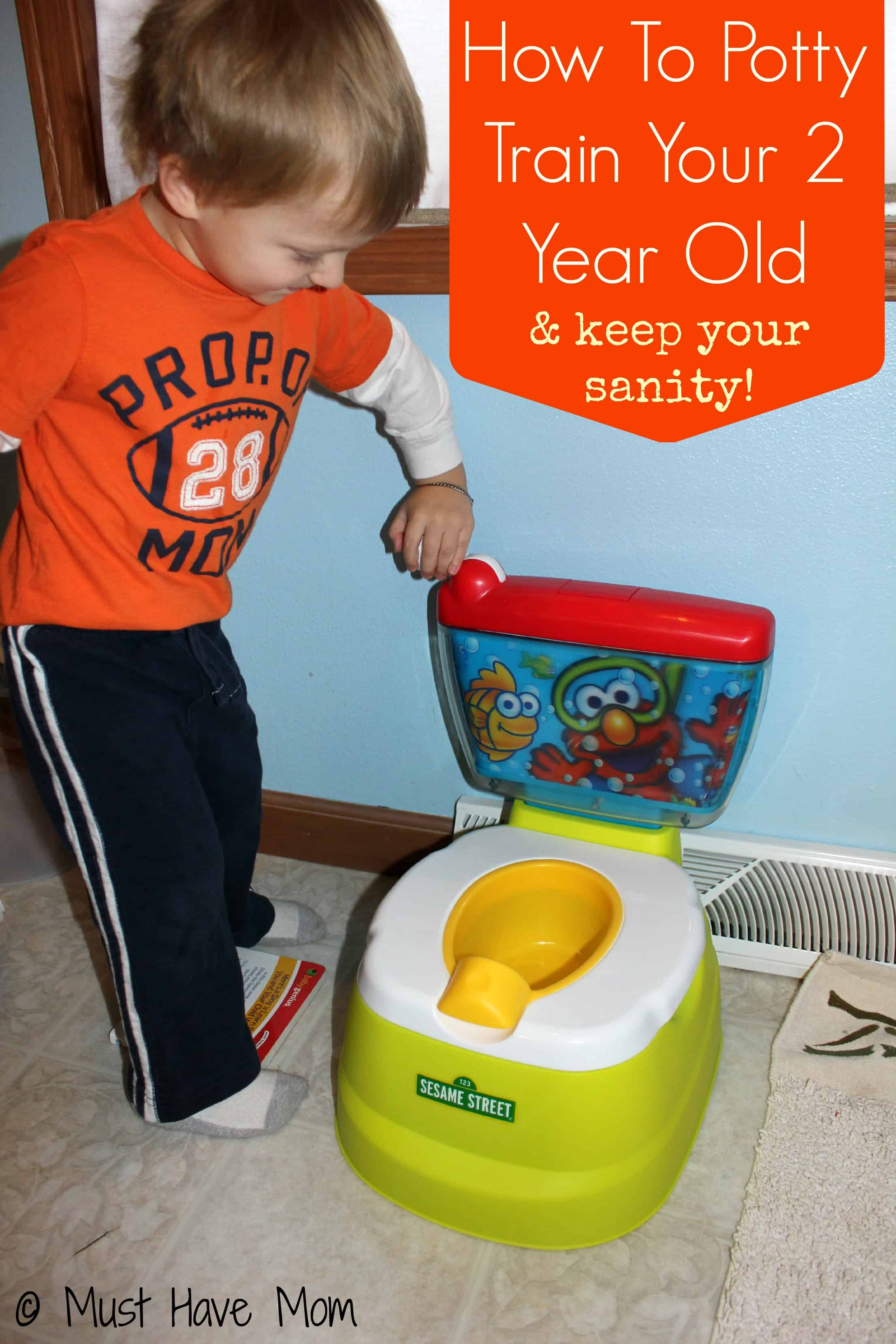 How to potty train a 2 year old poodle zero