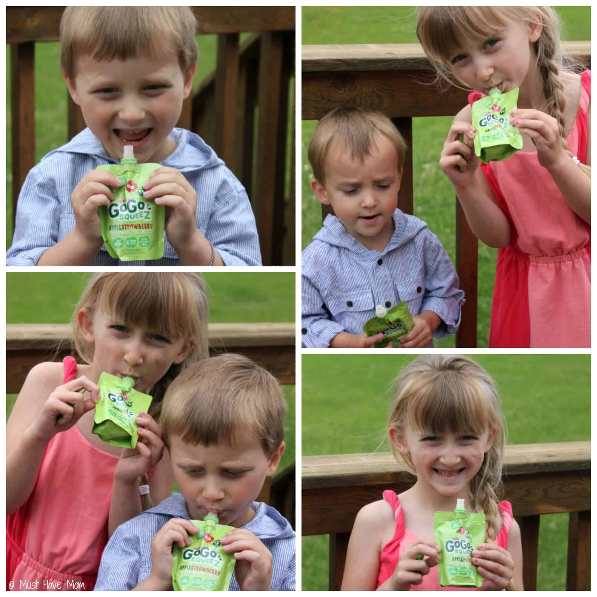 GoGo Squeez Pouches - Must Have Mom