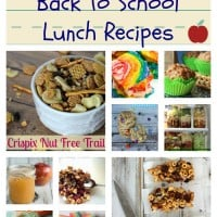 20 Peanut Free School Lunch Recipes and Ideas!