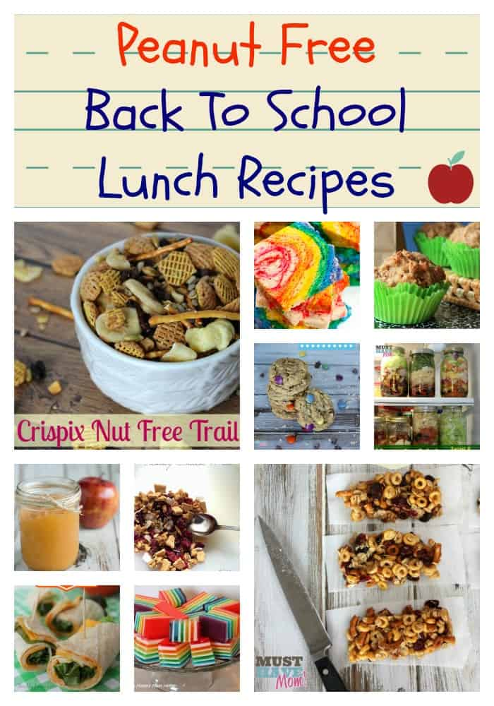 Peanut Free Back To School Lunch Recipes - Must Have Mom
