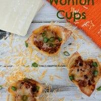 Sloppy Joe Wonton Cups Recipe