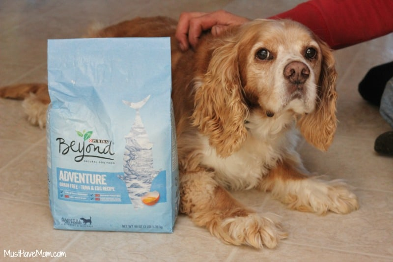 Max and Purina Beyond Adventure