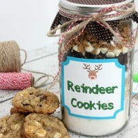 Reindeer Cookies In A Jar Plus Free Printable Tags!