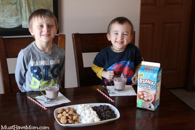 TruMoo Chocolate Marshmallow Milk & Hot Chocolate Bar