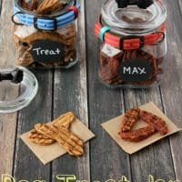 Easy DIY Dog Treat Jar That Is Modern & Worthy Of Counter Space