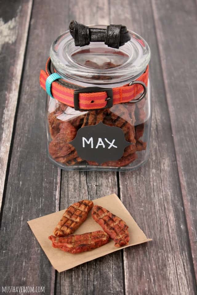 Easy DIY Dog Treat Jar