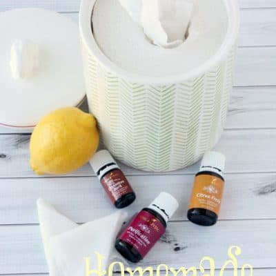 Chemical Free Homemade Facial Wipes