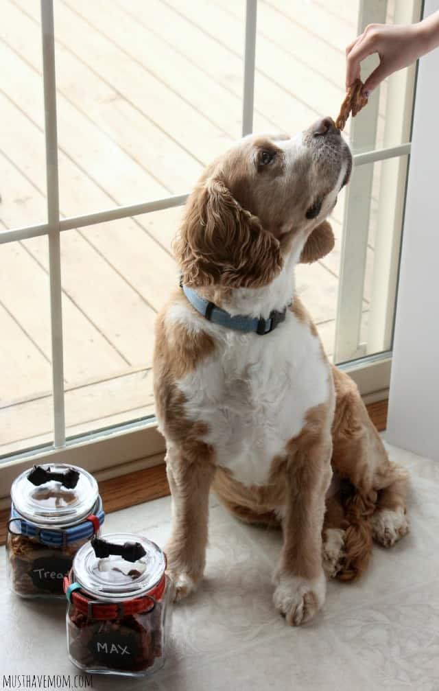Max and Nudges Dog Treats