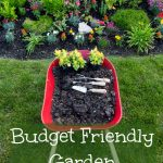Budget Friendly Garden Makeover Tips