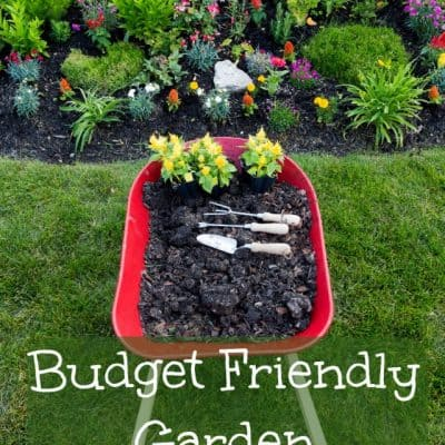How To Save Money When Building A Garden