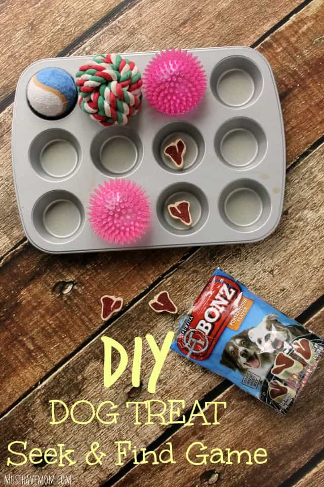 DIY Dog Treat Seek & Find Dog Game