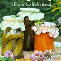 10 Canning Recipes To Preserve Your Garden Harvest