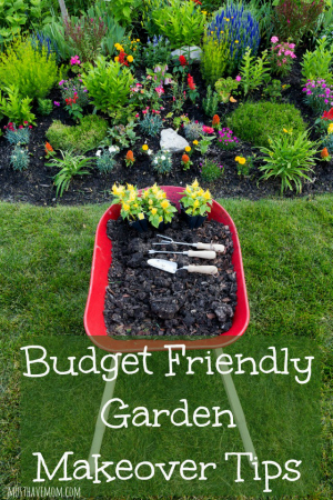 Budget-Friendly-Garden-Makeover-Tips