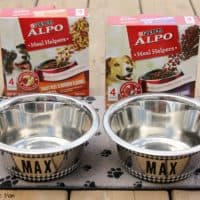 Easy DIY Personalized Dog Bowls! Makeover Your Dog's Mealtime