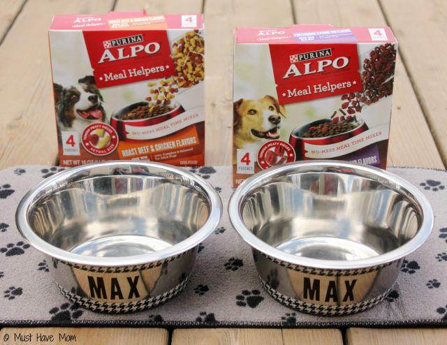 Easy Diy Personalized Dog Bowls