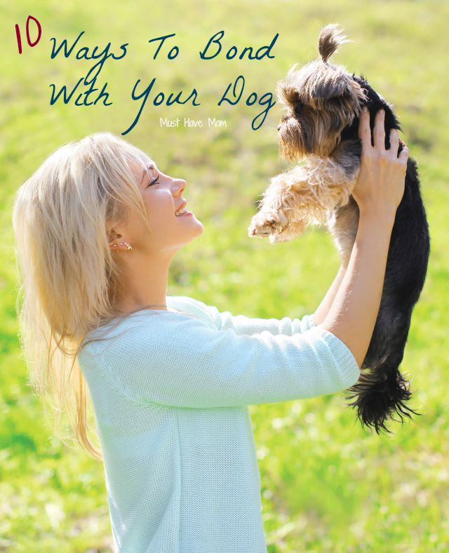 10 Ways To Bond With Your Dog! Great ideas for forming a long lasting friendship with your pet! Love these fun dog bonding ideas! #CesarHomeDelights