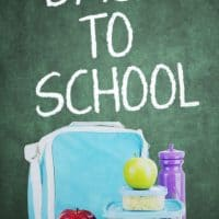 Back To School Lunch Ideas To Save Your Kids From The Boring Sandwich