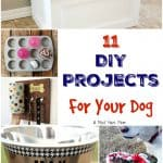 11+ DIY Projects For Your Dog!