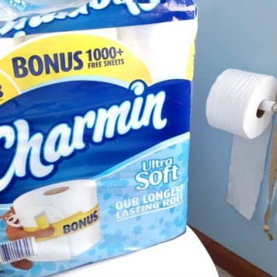 Teach Your Kids The Right Amount Of Toilet Paper To Use With This Handy Trick!