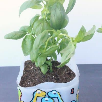 How To Make Self Watering Planters Out Of Milk Jugs!