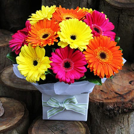 What you should know about sending flowers to someone in hospital