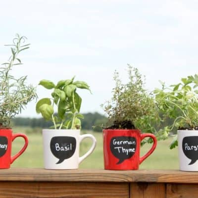 DIY Garden Ideas: Coffee Mug Herb Garden Tutorial