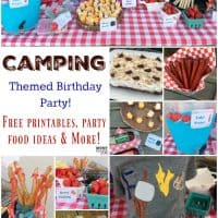 Camping Themed Birthday Party Ideas, Camping Party Food & Free Camping Party Printables!