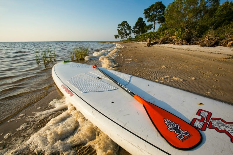 7 Reasons to visit Gulf County Florida in Fall or Winter! I had no idea that Gulf County had so many things to do!