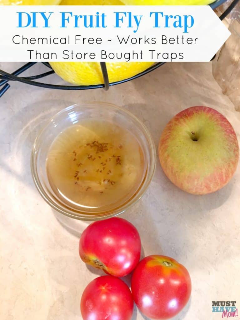 diy-fruit-fly-trap-chemical-free-works-better