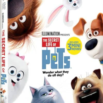 Secret Life of Pets Themed Activities & Treats to Celebrate the Release Today!